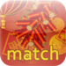 WCC Chinese New Year Match  - Memory Cards  - Learn Chinese New Year i